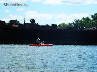 Image: CopyrightHorseHints.org/Bill along side a sunken ship at Mallows Bay.